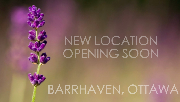 New Counselling Office in Barrhaven, Coming soon!